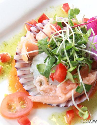 pic-raw-scallops